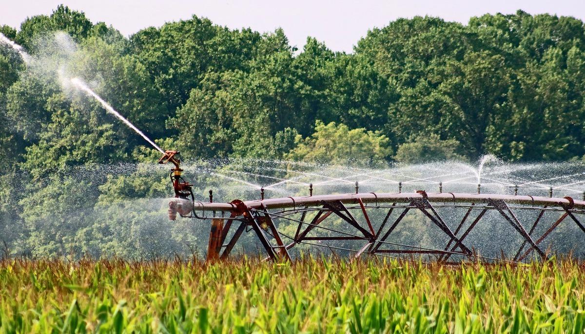 Sistema de irrigação em plantio agrícola