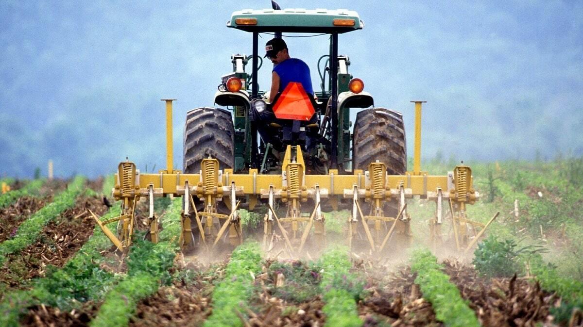 Agricultor arando o solo em área fértil